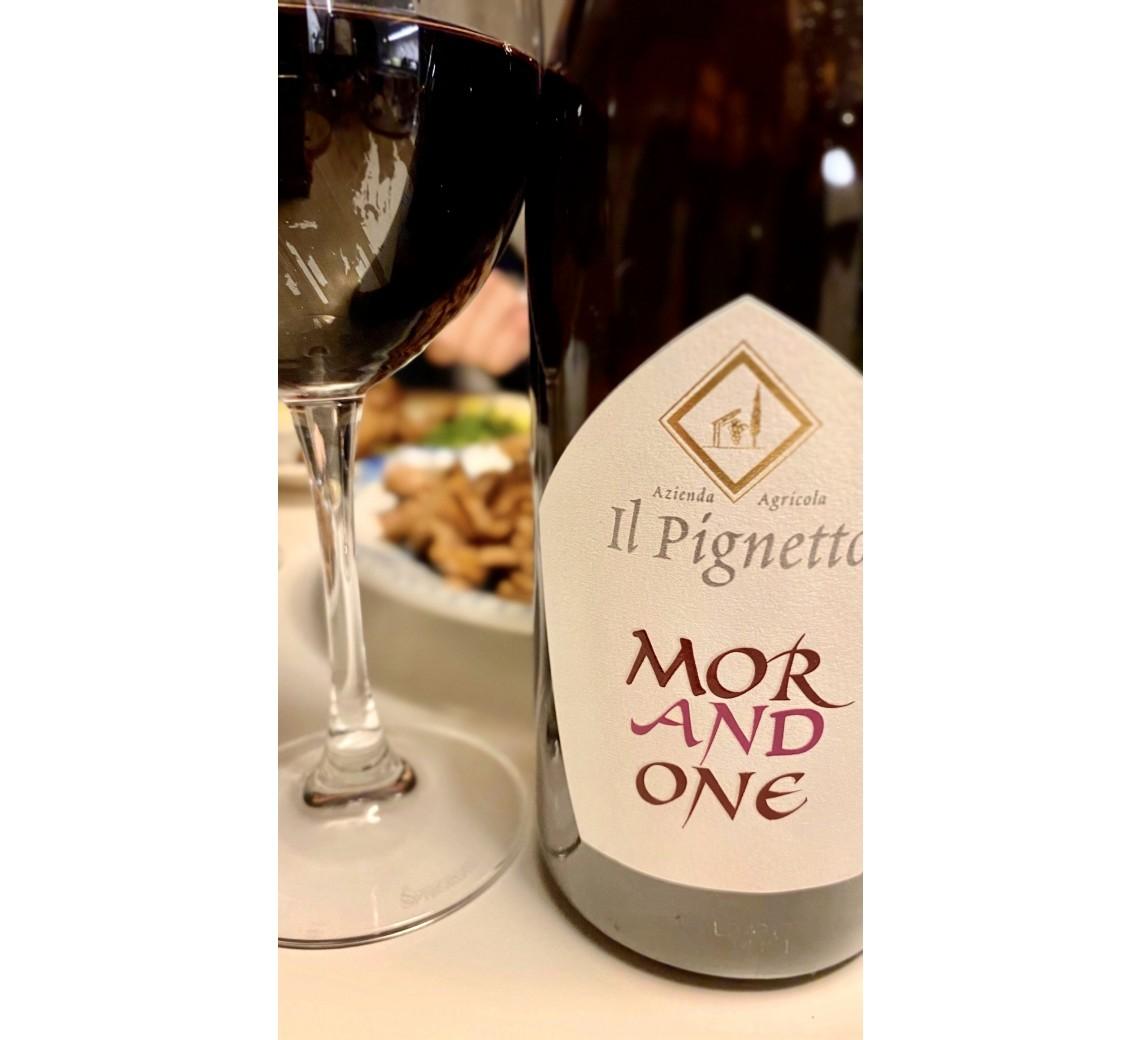 Il Pignetto Morandone