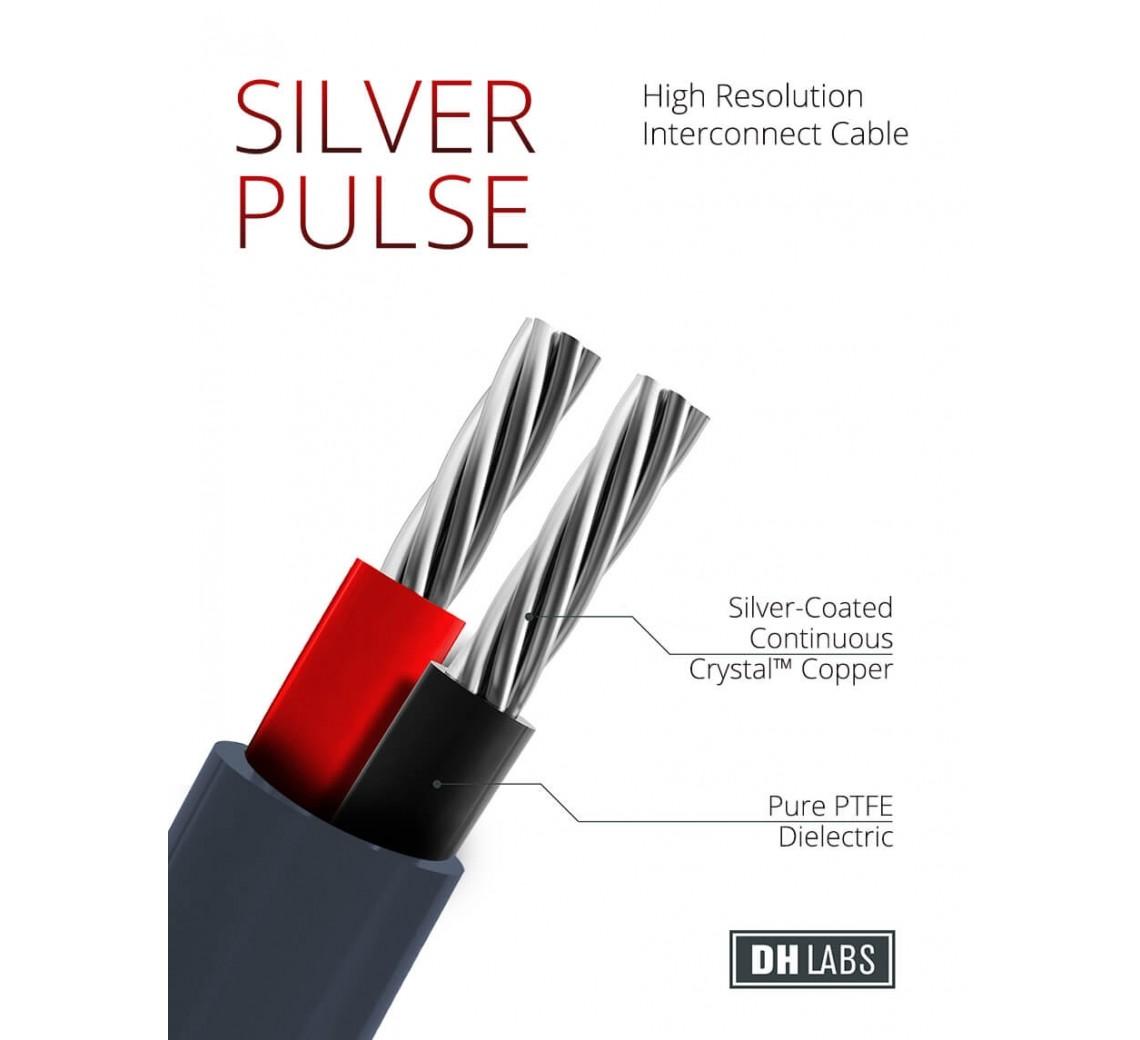 DHLabsSilverPulse-05